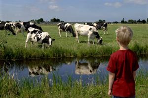 Boer krijgt veel minder geld voor zijn melk