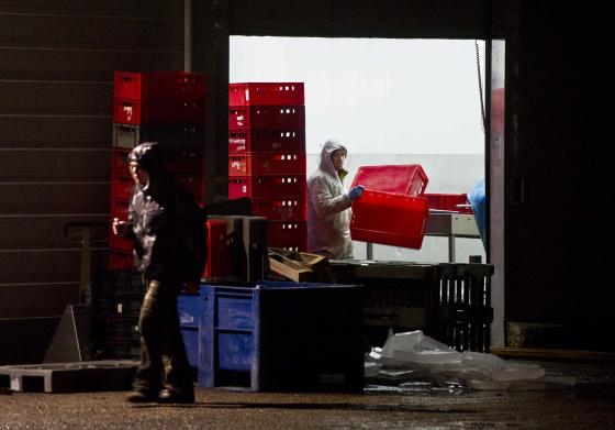 OM wil €1,2 miljoen van vleesfraudeur Selten