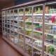 Natuurwinkel zet glasdeuren voor koeling