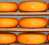 Friesland Foods verkoopt kaasfabriek
