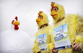 Wakker Dier vervolgt tv-campagne tegen Aldi