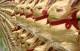 Attachment 001 food image dis142576i01 80x51