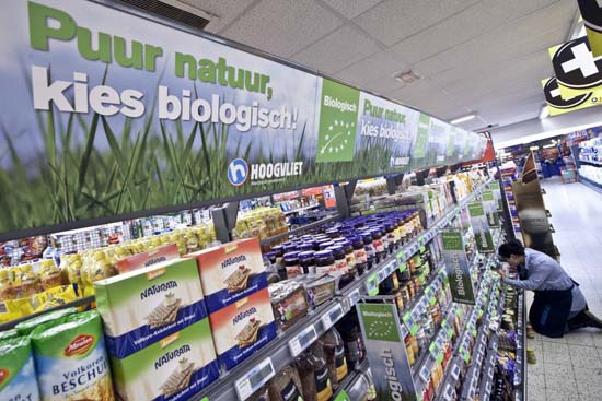 Attachment 008 food image dis143993i08