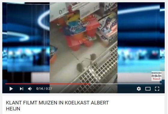 Ophef over muizen in koeling Antwerpse AH