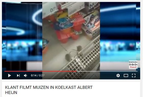 Amsterdamse AH XL dicht om muizenplaag