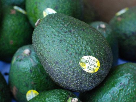 Nederland importeert flink meer avocado's