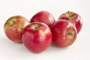 AH gaat exclusief appelras verkopen