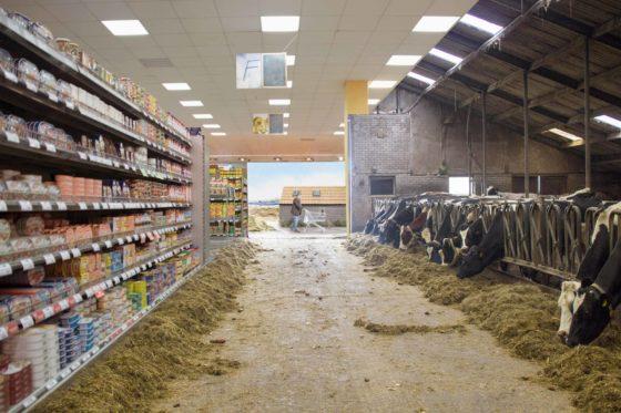 Supertopia: 'Voedselketen vernieuwen kan niet alleen met zenden'