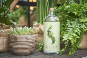 Diageo koopt non-alcoholisch merk Seedlip